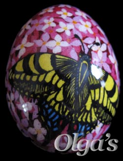 Modern chicken pysanky. Machaon Butterfly.